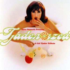 Image pour 'Dave Samuels Presents Tjader-Ized (A Tribute To Cal Tjader)'