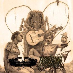 Image for 'Split single w/ Dinozauras'