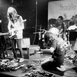 Image for 'the fragile'
