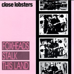 Image for 'Foxheads Stalk This Land'