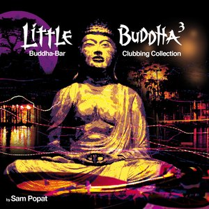 Image for 'Little Buddha 3'