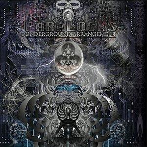 Immagine per 'Parallel Cosmos'