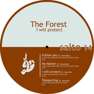 Image for 'I Will Protect'