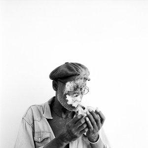 Bild för 'Melvin Van Peebles'