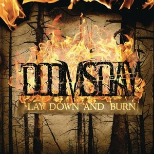 Image pour 'Lay Down And Burn'