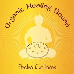 Immagine per 'Organic Healing Sound'