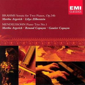 Image for 'Brahms : Sonata for 2 pianos & Mendelssohn : Piano Trio (LUGANO FESTIVAL 2002)'