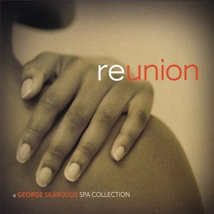 Image for 'Reunion'