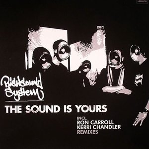 Image for 'risksoundsystem'