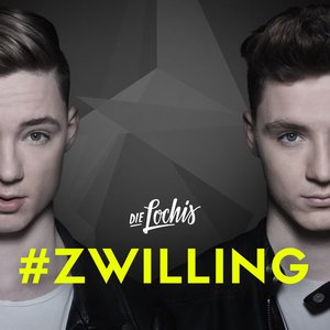 Image for '#zwilling'