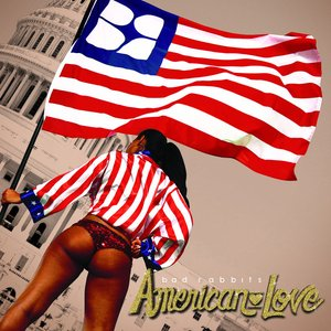 Image for 'American Love'