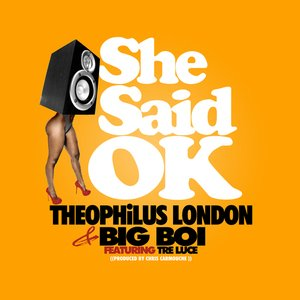 Image for 'She Said OK'