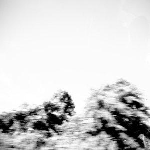 Bild für 'Pictures'