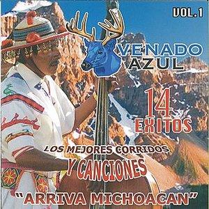 Image for 'Los Mejores Corridos Y Canciones'