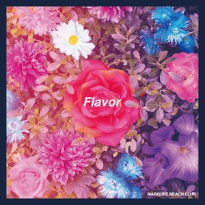 Image for 'Flavor'
