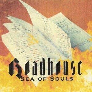 Bild für 'Sea of Souls'