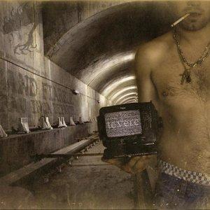 Image for 'Cand Fiarele Erau Inca Departe'