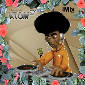 Immagine per 'iMix'