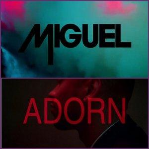 Imagen de 'Adorn'