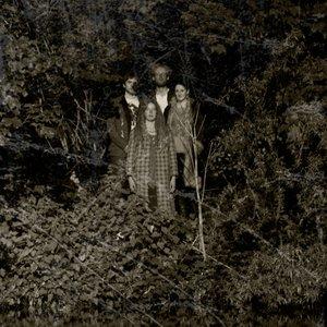 Bild für 'Grace and the Magic Roots'