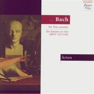 Image for 'Sonata no.6 in C major (originally in G major) BWV530: Allegro'