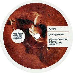 Imagen de 'Polygon Sea / Cydonia'