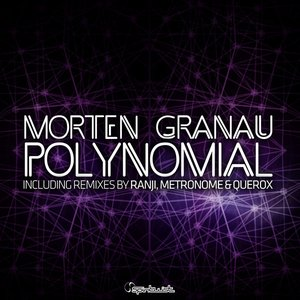 Image for 'Polynomial'
