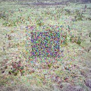 Imagen de 'Untitled 2'