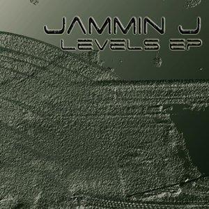Image pour 'LEVELS EP'