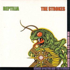 Image for 'Reptilia'