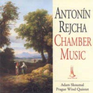 Image for 'Wind Quintet B dur - Adagio. Allegro'