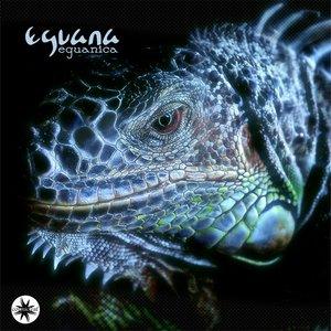 Bild für 'Eguanica'