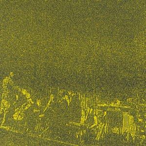 Image for 'Tendrils In Vigne'
