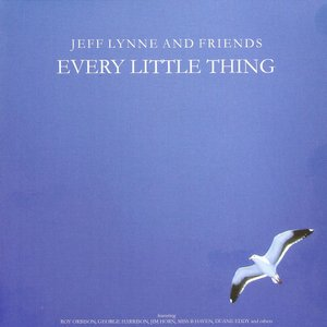 Image for 'Every Little Thing'