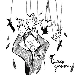Image for 'Disco Gnome'