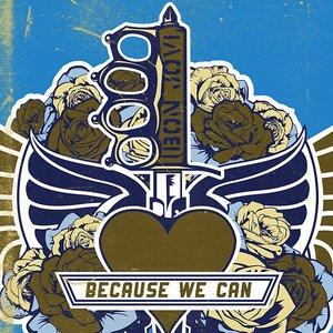 Bild für 'Because We Can'