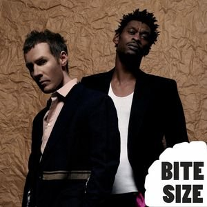 Image for 'Bite Size Massive Attack'