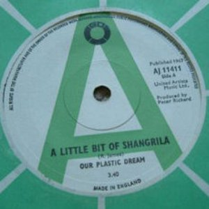 Image for 'Our Plastic Dream'