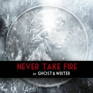 Image for 'Never Take Fire'