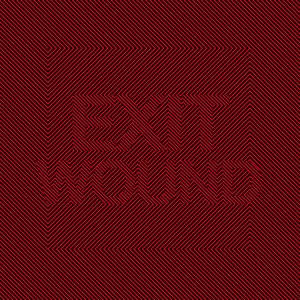 Image for 'Exit Wound'