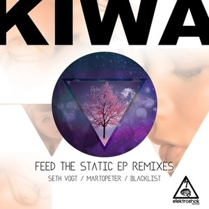 Image for 'Feed The Static EP Remixes'