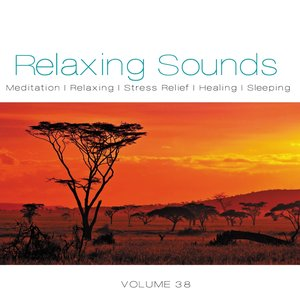 """Relaxing Sounds, Vol. 38""的图片"