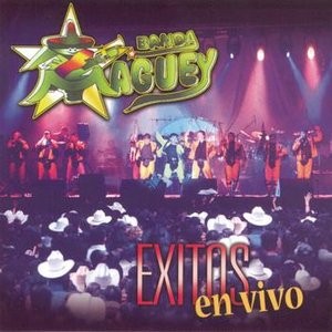 Image for 'Exitos En Vivo'