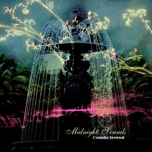 Image for 'Midnight Sounds'