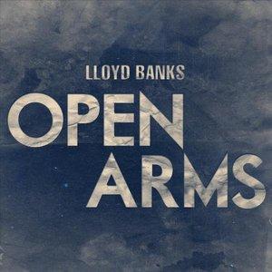Immagine per 'Open Arms - Single'