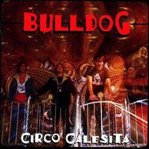 Image pour 'Circo Calesita'