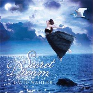 Image for 'Secret Dream'