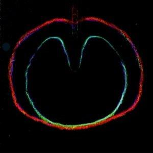 Bild för 'Apple Venus Volume 2 - Wasp Star'
