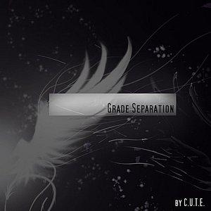 Image for 'Grade Separation'