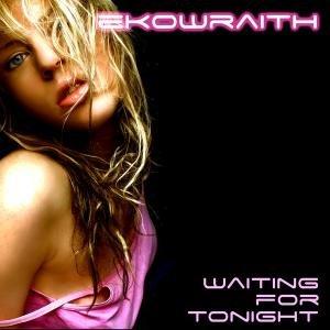 Bild för 'Ekowraith'